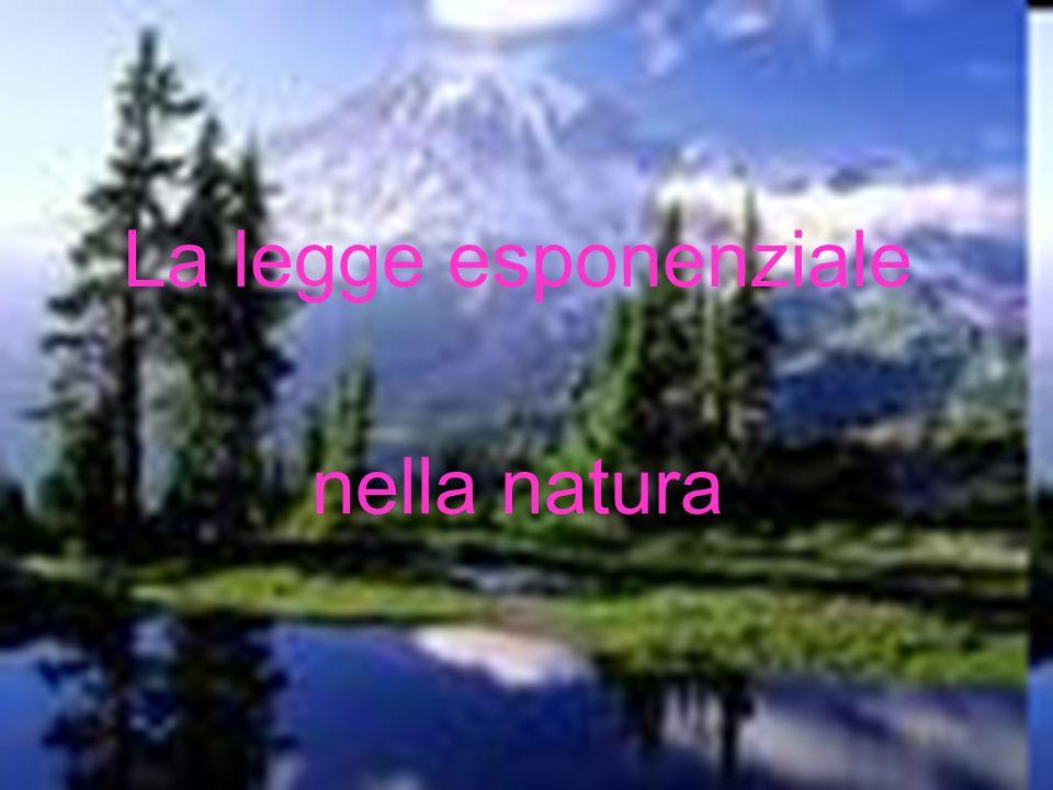 La legge esponenziale nella natura