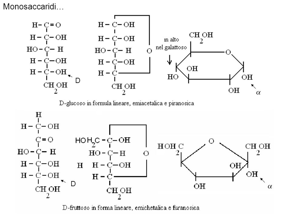 Monosaccaridi… D  D 