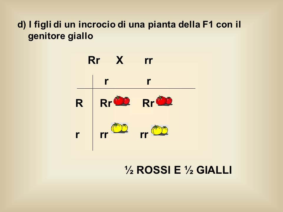 Rr X rr r r R Rr Rr r rr rr ½ ROSSI E ½ GIALLI