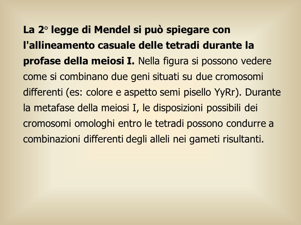 La 2° legge di Mendel si può spiegare con l allineamento casuale delle tetradi durante la profase della meiosi I.