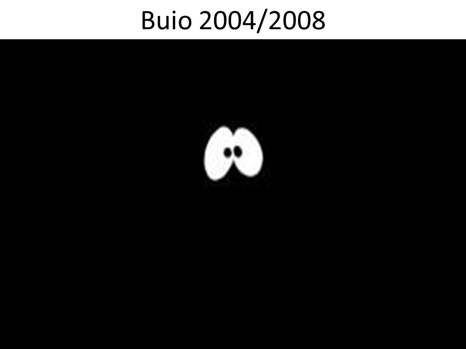 Buio 2004/2008