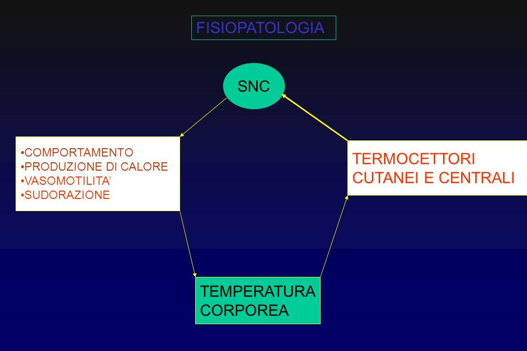 FISIOPATOLOGIA SNC TERMOCETTORI CUTANEI E CENTRALI TEMPERATURA