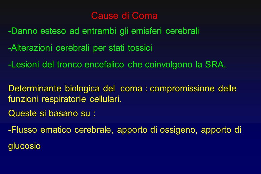 Cause di Coma -Danno esteso ad entrambi gli emisferi cerebrali