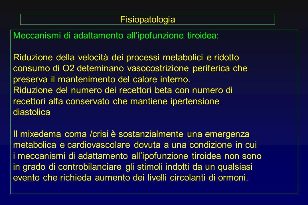 FisiopatologiaMeccanismi di adattamento all'ipofunzione tiroidea: Riduzione della velocità dei processi metabolici e ridotto.