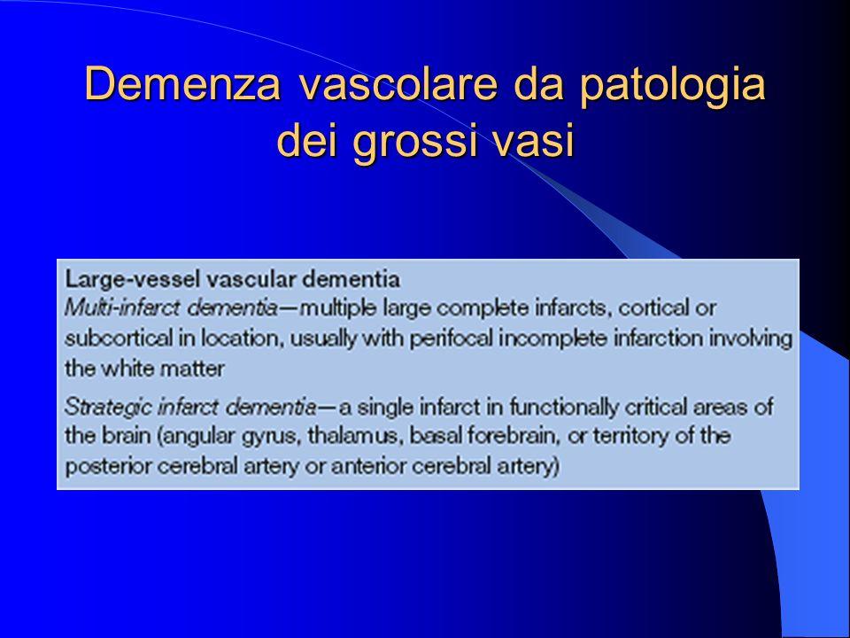 Demenza vascolare da patologia dei grossi vasi
