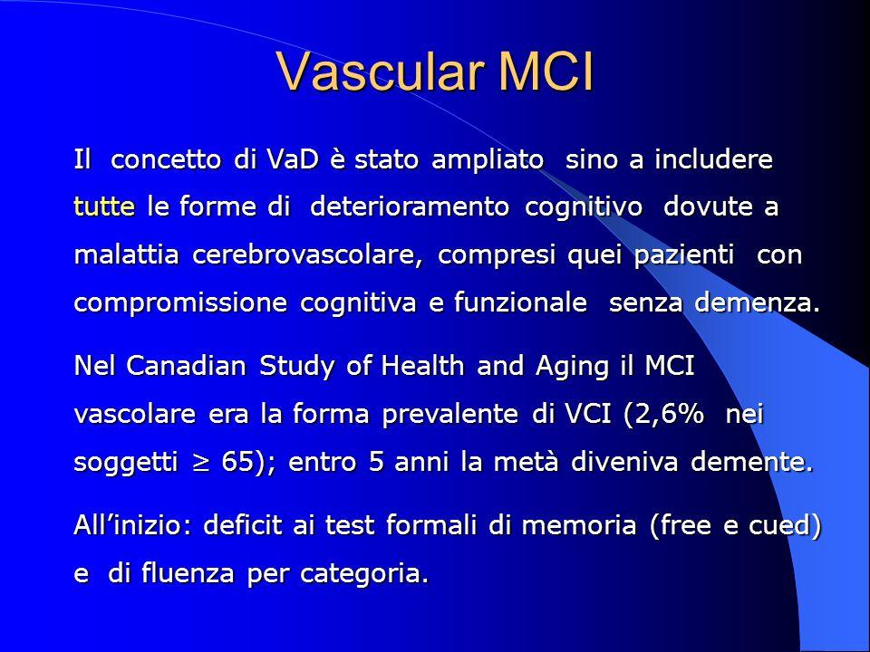 Vascular MCI
