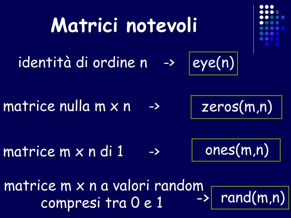 matrice m x n a valori random
