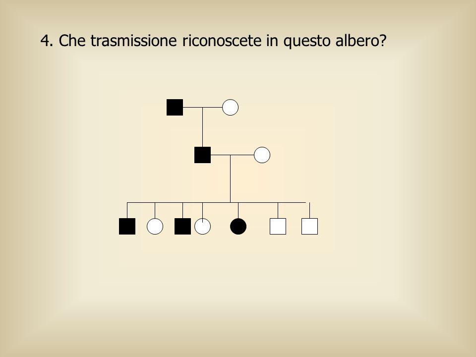 4. Che trasmissione riconoscete in questo albero