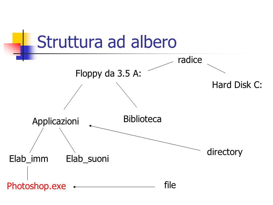 Struttura ad albero radice Floppy da 3.5 A: Hard Disk C: Biblioteca