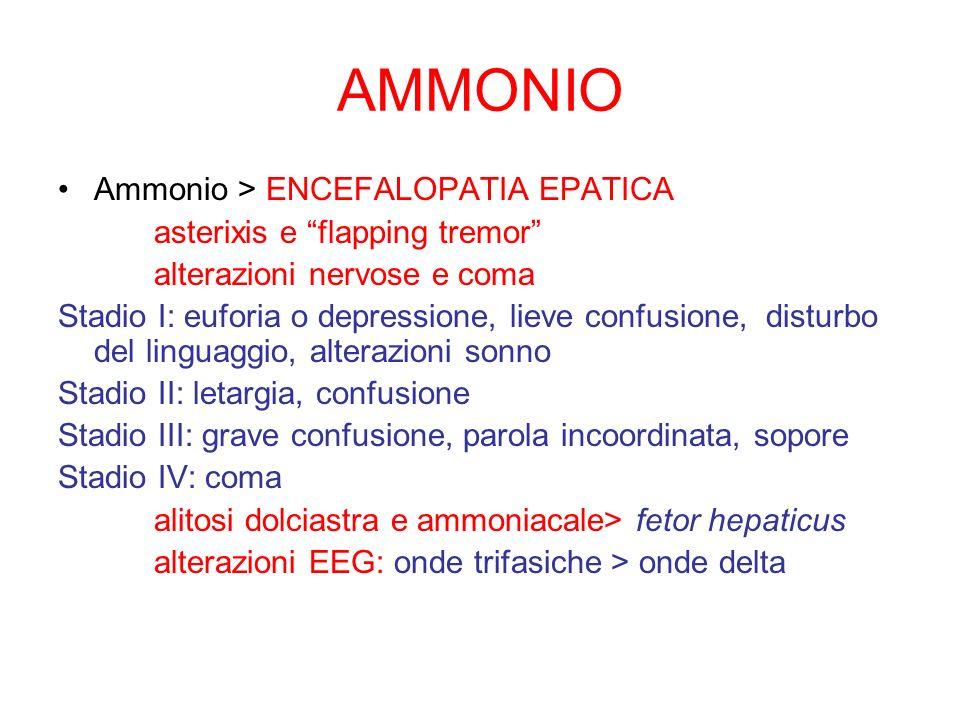 AMMONIO Ammonio > ENCEFALOPATIA EPATICA