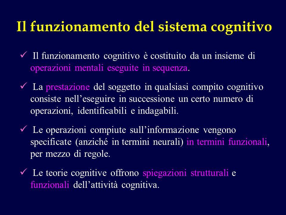 Il funzionamento del sistema cognitivo