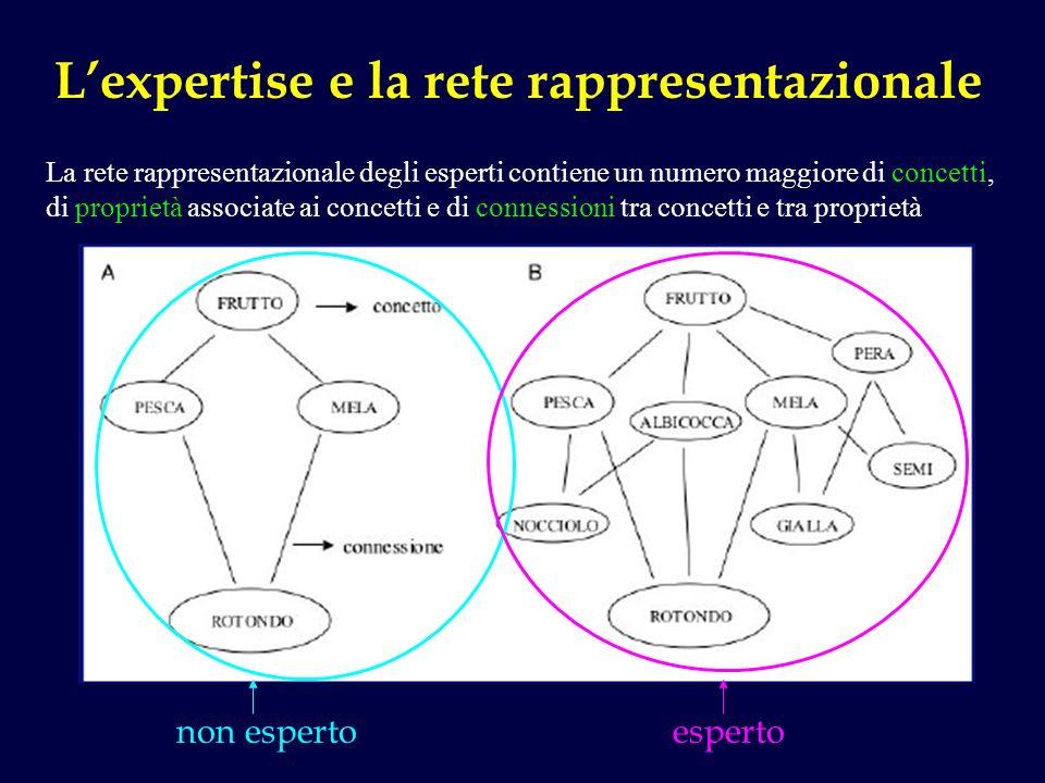 L'expertise e la rete rappresentazionale
