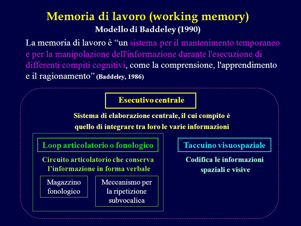 Memoria di lavoro (working memory)