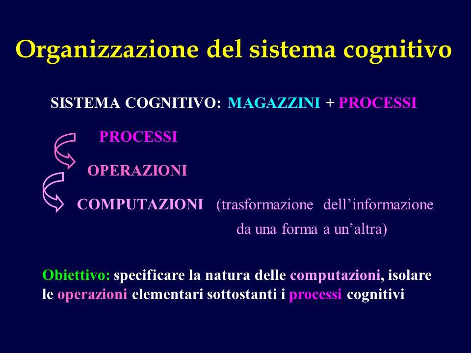 Organizzazione del sistema cognitivo