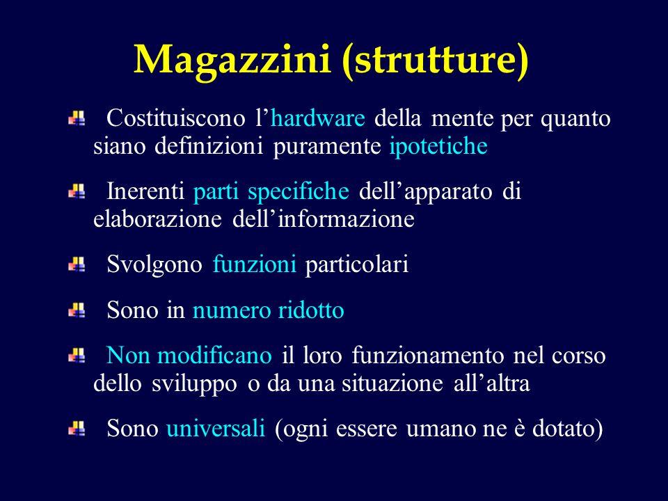 Magazzini (strutture)
