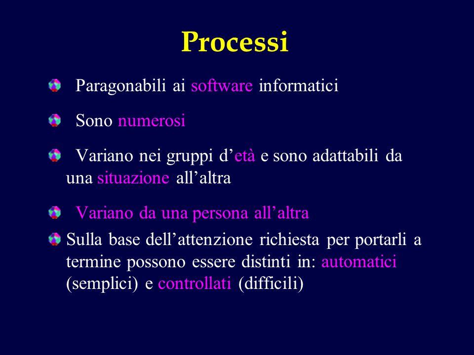 Processi Paragonabili ai software informatici Sono numerosi