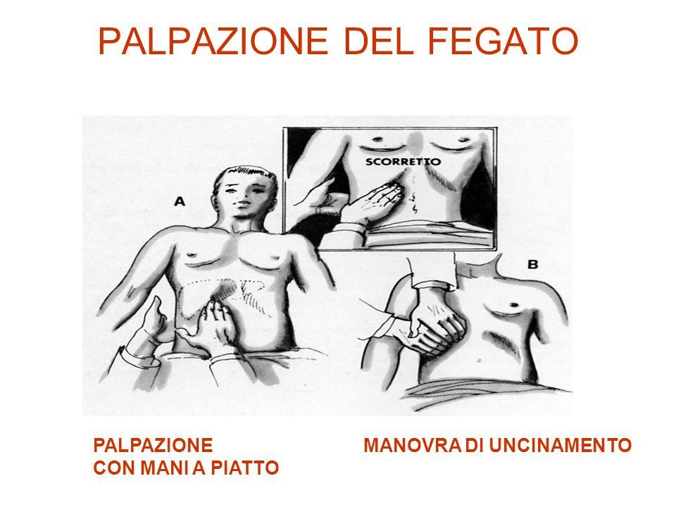 PALPAZIONE DEL FEGATO PALPAZIONE MANOVRA DI UNCINAMENTO