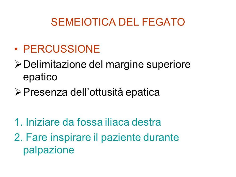 SEMEIOTICA DEL FEGATO PERCUSSIONE. Delimitazione del margine superiore epatico. Presenza dell'ottusità epatica.