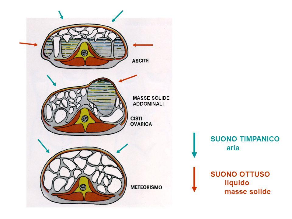 SUONO TIMPANICO aria SUONO OTTUSO liquido masse solide MASSE SOLIDE