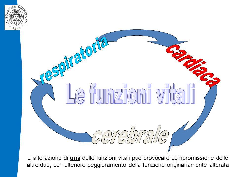 respiratoria cardiaca Le funzioni vitali cerebrale