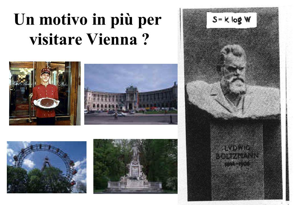Un motivo in più per visitare Vienna