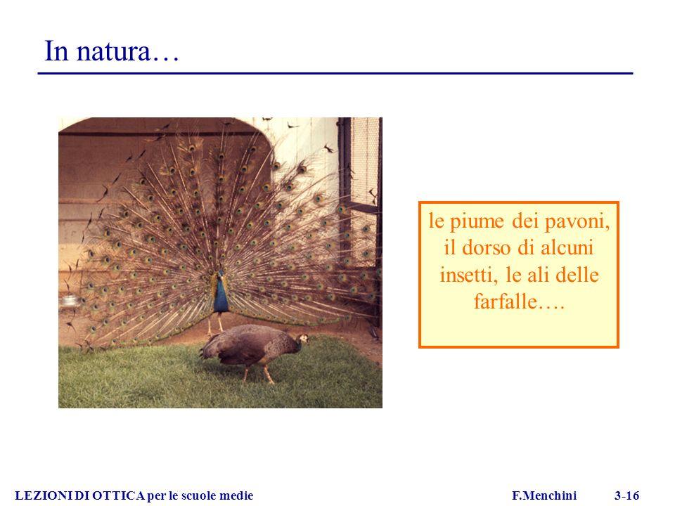 le piume dei pavoni, il dorso di alcuni insetti, le ali delle