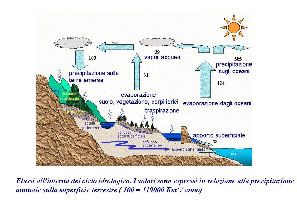 Flussi all'interno del ciclo idrologico