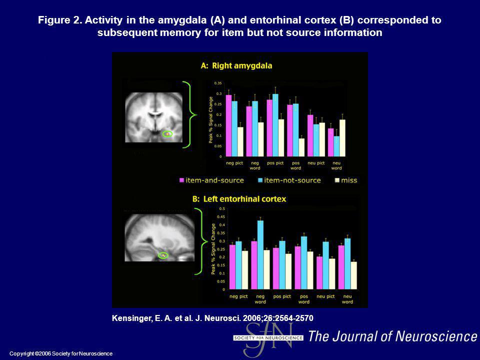 Figure 2. Activity in the amygdala (A) and entorhinal cortex (B) corresponded to subsequent memory for item but not source information