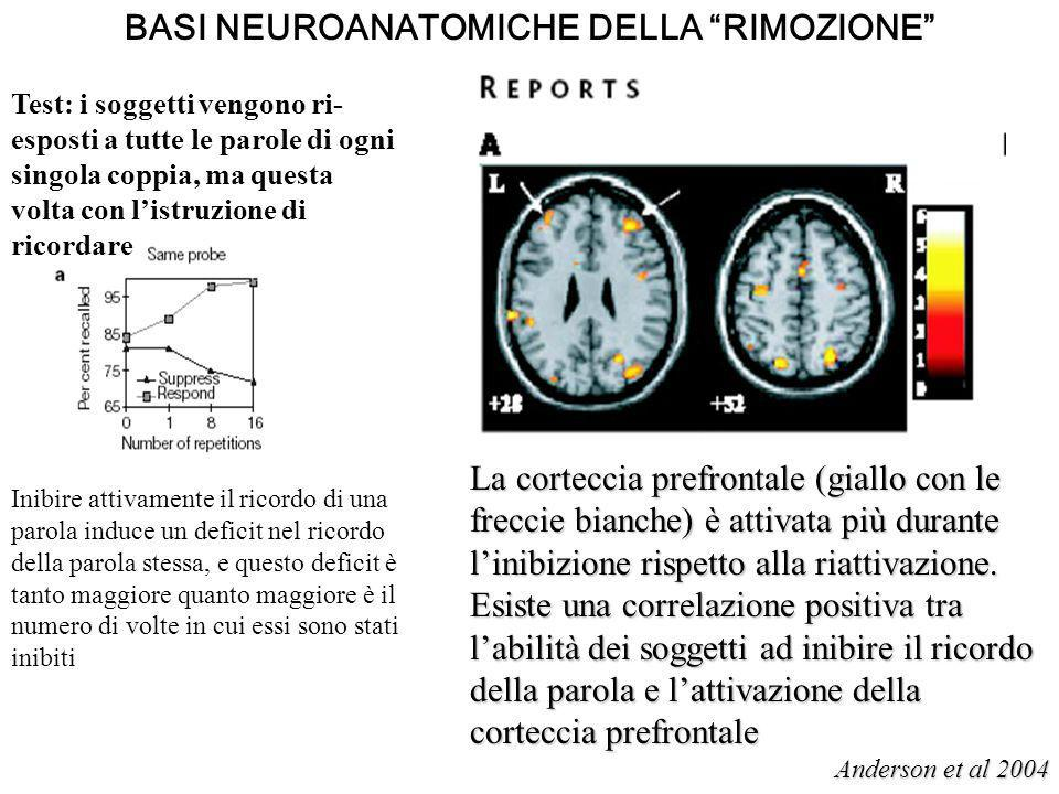 BASI NEUROANATOMICHE DELLA RIMOZIONE