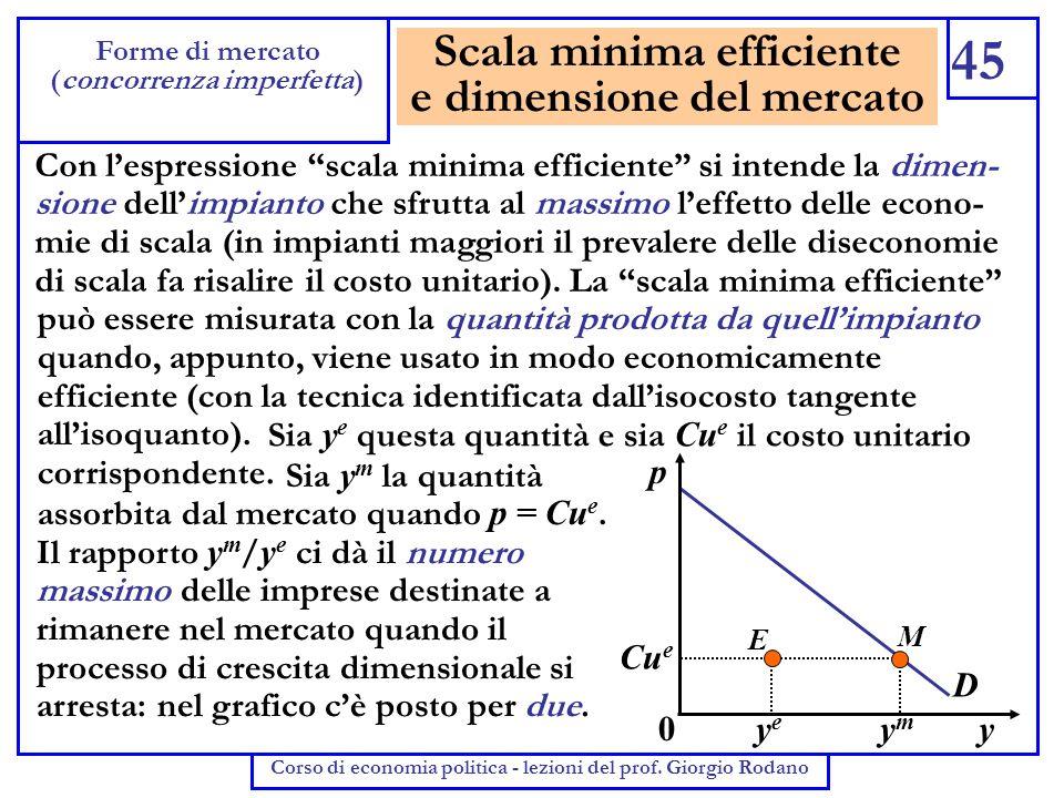 Scala minima efficiente e dimensione del mercato