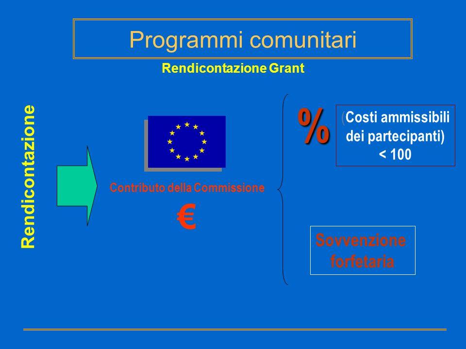 Rendicontazione Grant Contributo della Commissione