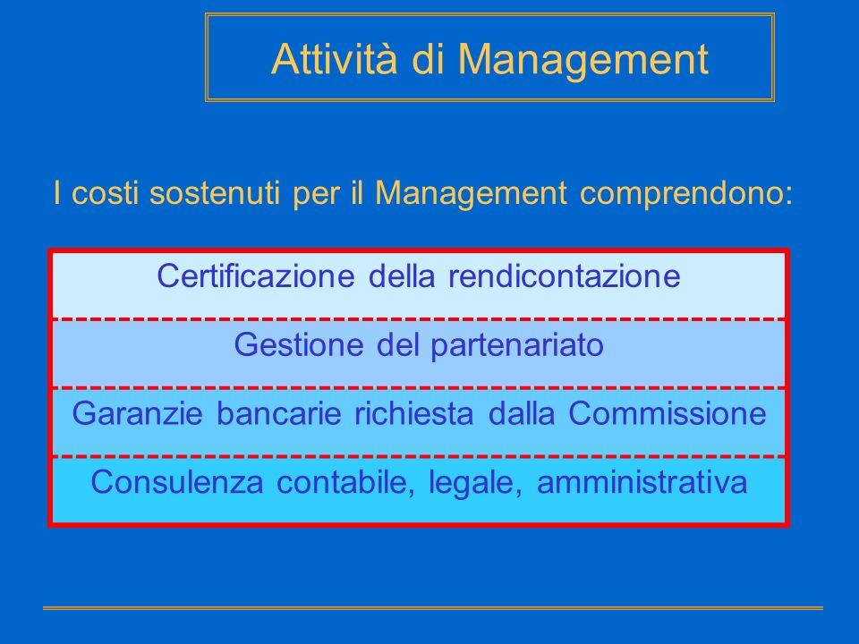 Attività di Management