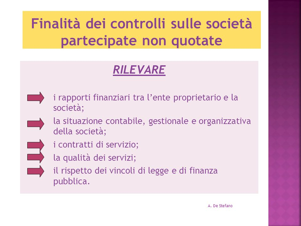 Finalità dei controlli sulle società partecipate non quotate