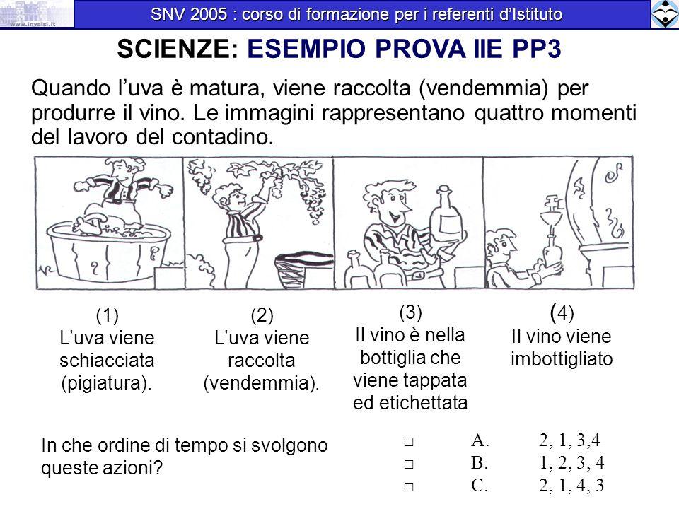 Top SNV 2005 : corso di formazione per i referenti d'Istituto - ppt  BP01