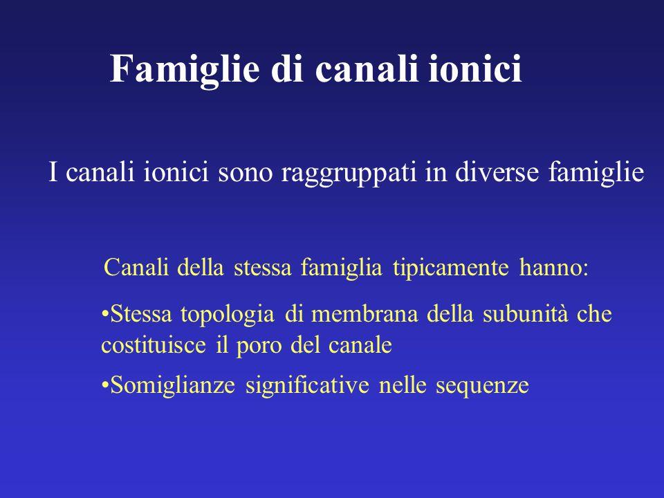 Famiglie di canali ionici
