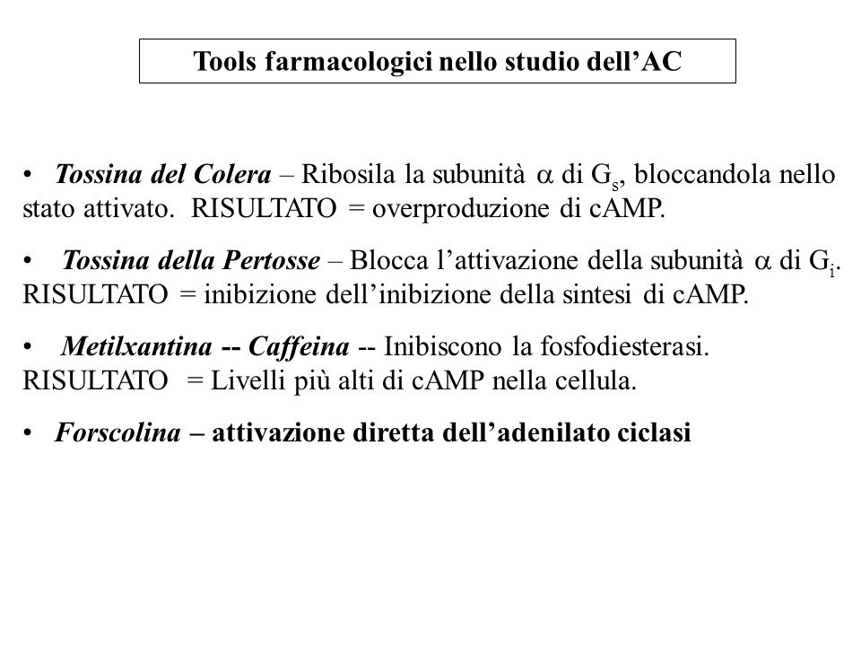 Tools farmacologici nello studio dell'AC