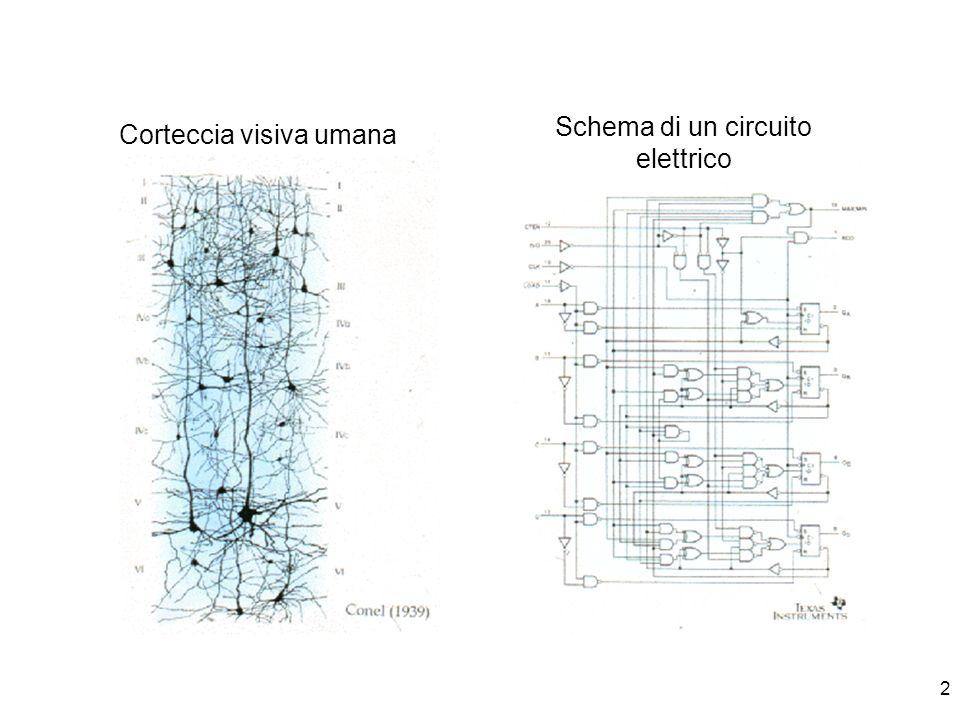 Schema di un circuito elettrico Corteccia visiva umana