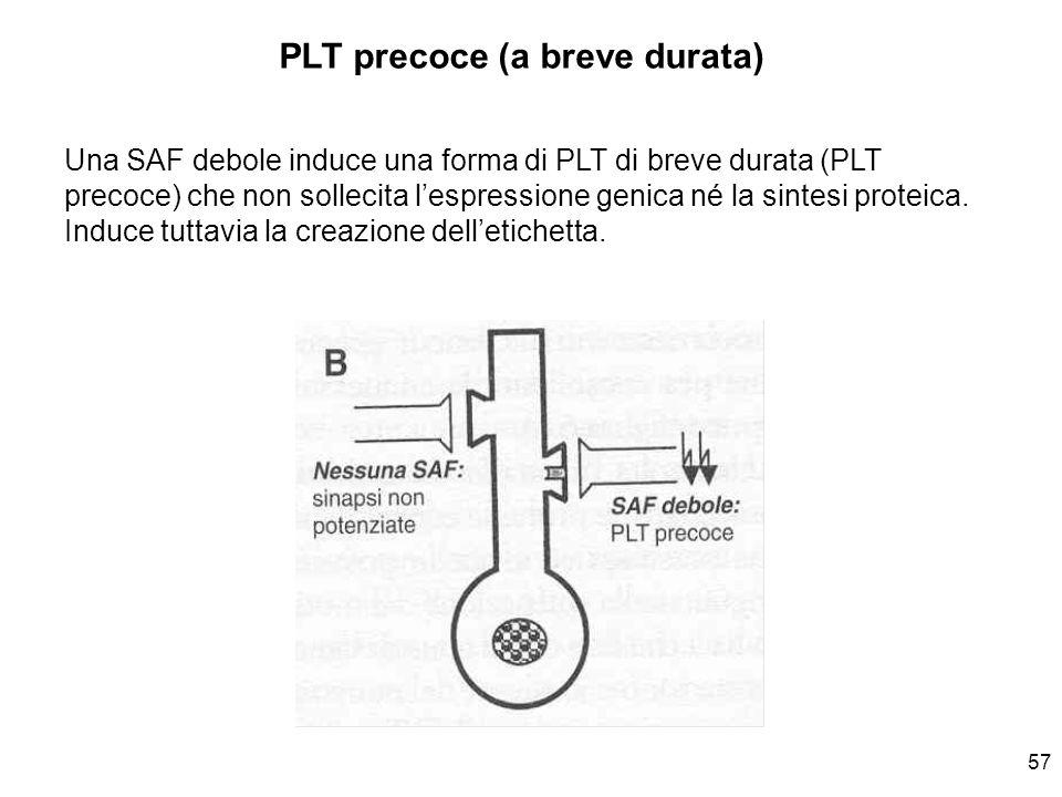 PLT precoce (a breve durata)