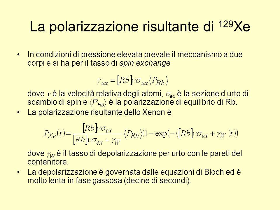 La polarizzazione risultante di 129Xe