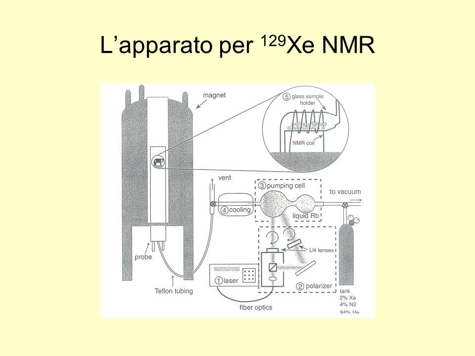 L'apparato per 129Xe NMR