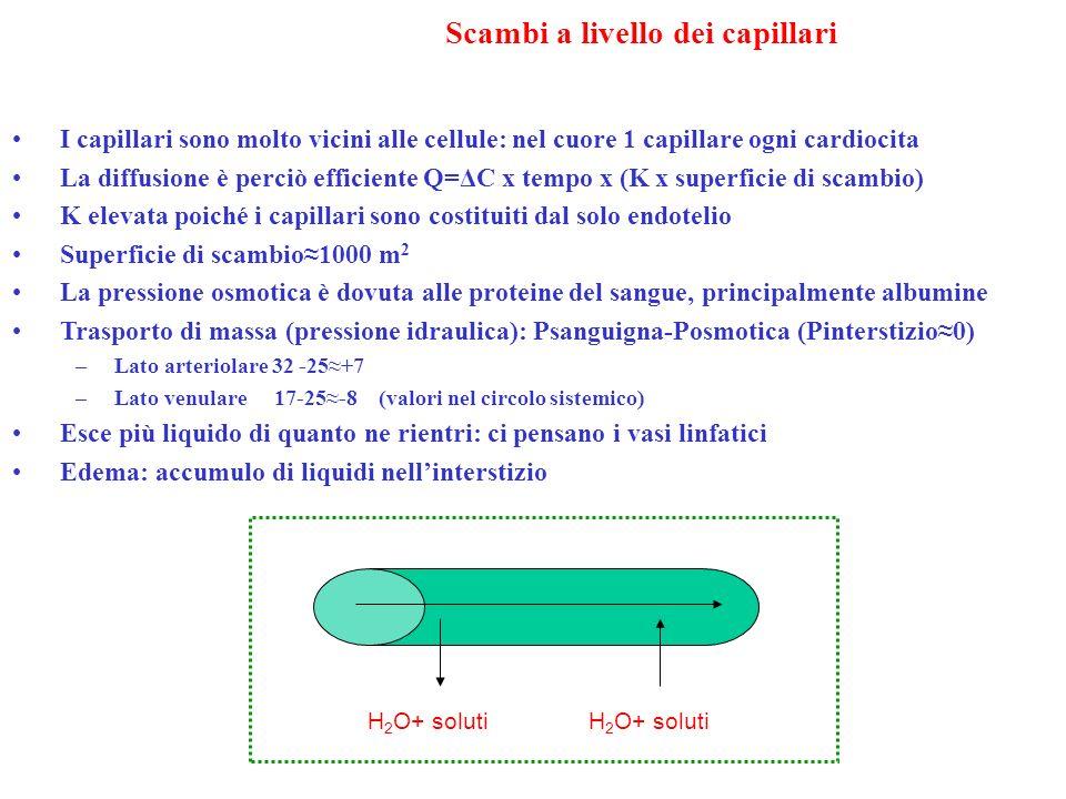 Scambi a livello dei capillari