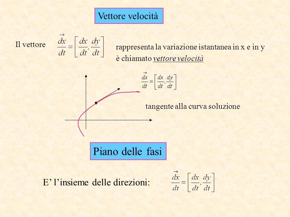 Piano delle fasi Vettore velocità E' l'insieme delle direzioni: