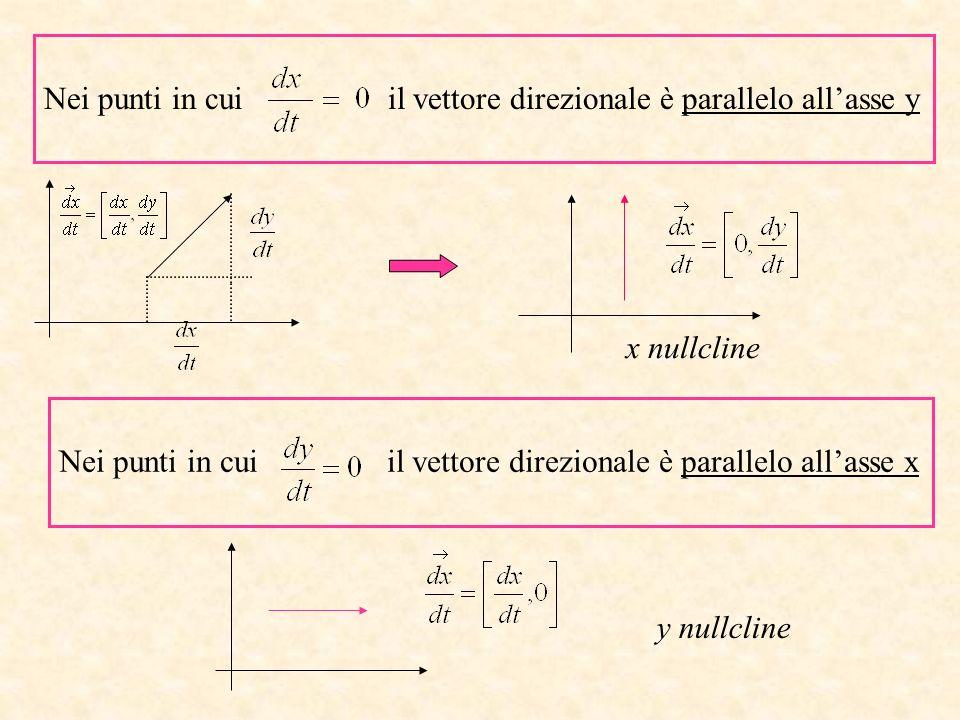 Nei punti in cui il vettore direzionale è parallelo all'asse y