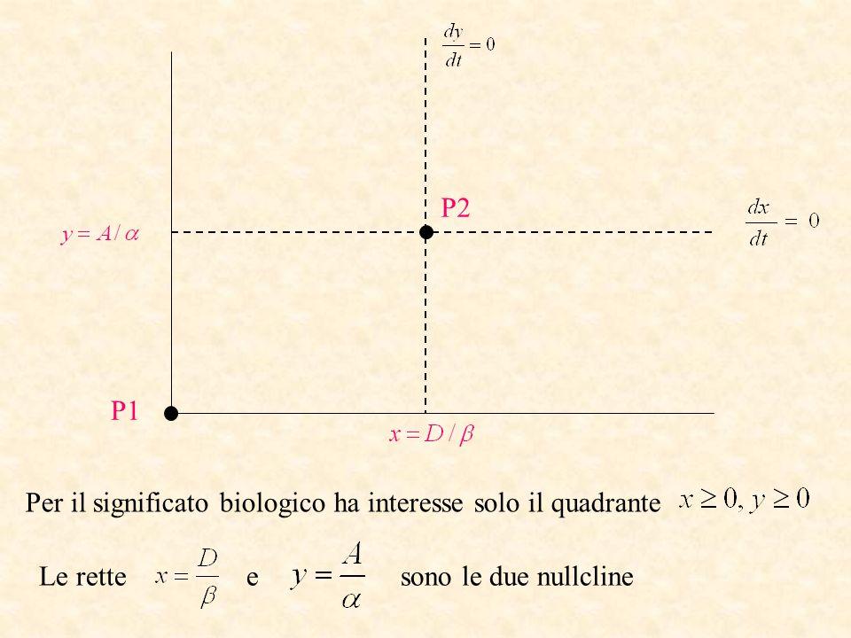 P2 P1. Per il significato biologico ha interesse solo il quadrante.
