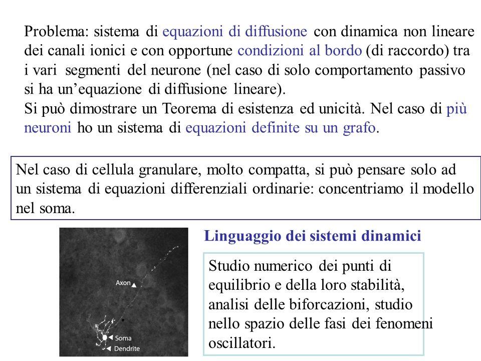 Problema: sistema di equazioni di diffusione con dinamica non lineare