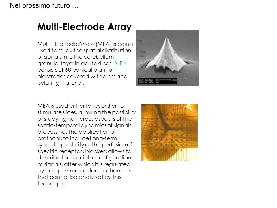 Multi-Electrode Array