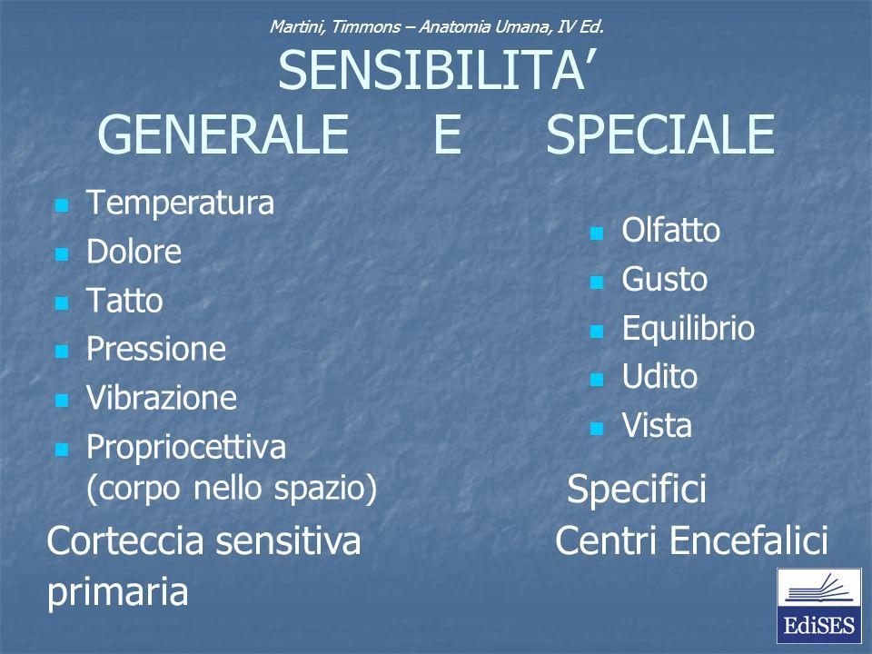 SENSIBILITA' GENERALE E SPECIALE