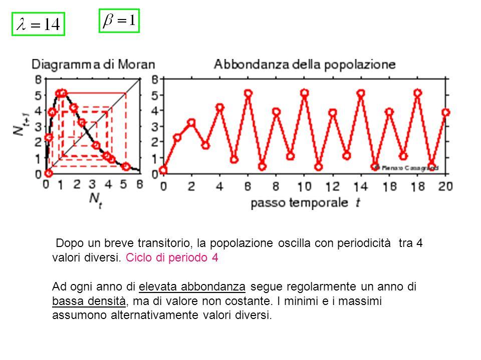 Dopo un breve transitorio, la popolazione oscilla con periodicità tra 4 valori diversi. Ciclo di periodo 4