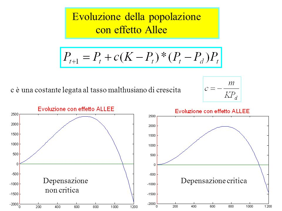 con effetto Allee Evoluzione della popolazione