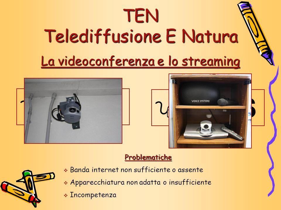 9 S 9 S TEN Telediffusione E Natura La videoconferenza e lo streaming